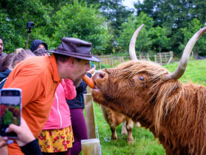 Tour guide Stephen with a hairy coo